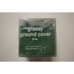 Grassy Ground Cover