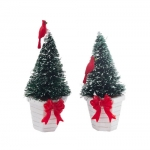 Picket Lane Potted Evergreens, Set of 2