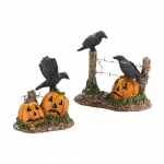 Halloween Ravens, Set of 2