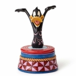 Daffy Duck Treasure Box