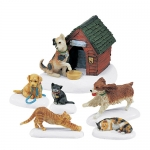 Cats and Dogs (Set of 6)