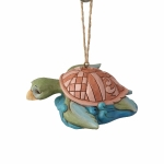 Coastal Sea Turtle Orn